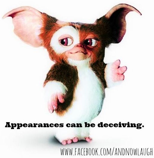 appearances can be deceiving - photo #3