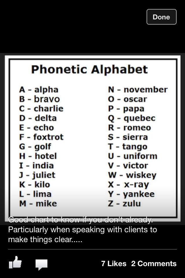 alphabet book report