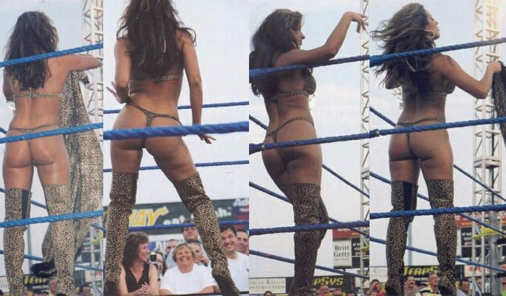 Dawn Marie   WWE Divas   Pinterest