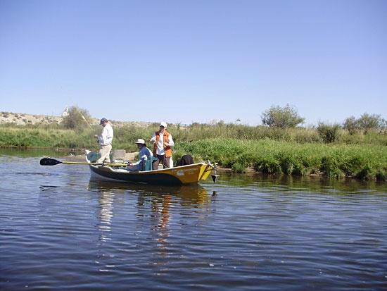 Laramie wyoming fly fishing fly fishing pinterest for Wyoming fly fishing