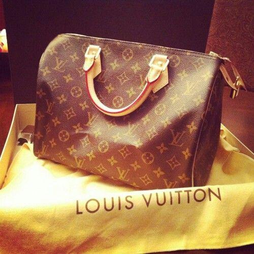 Louis Vuitton purse | Bag Evny | Pinterest
