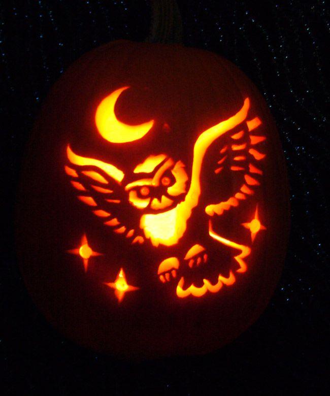 Owl pumpkin favorite places spaces pinterest