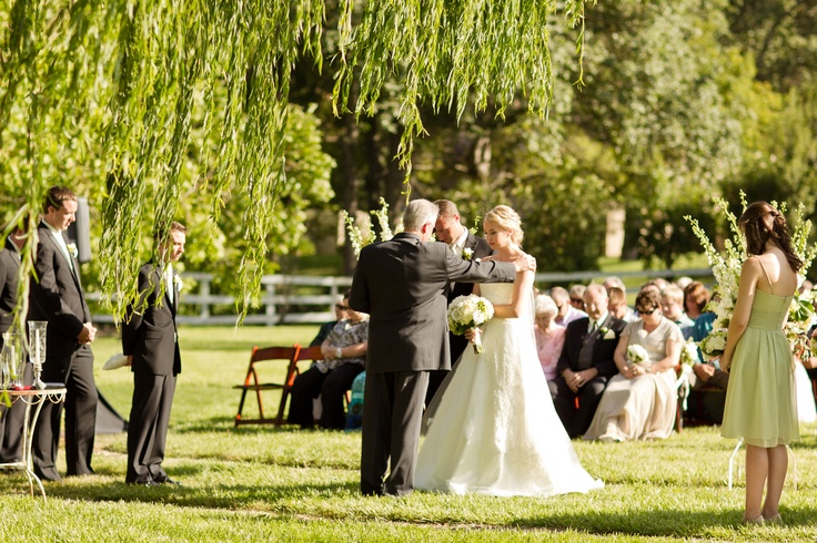 outdoor ceremony site, willows, green