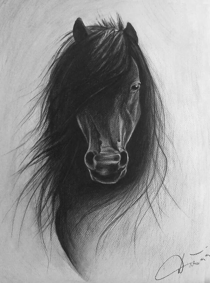 Pin by tamara siebes on art sketches pinterest for Pictures of awesome drawings