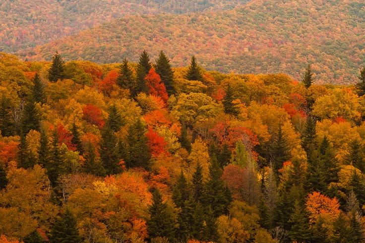Fall in the Appalachia   The Beauty of Appalachia   Pinterest