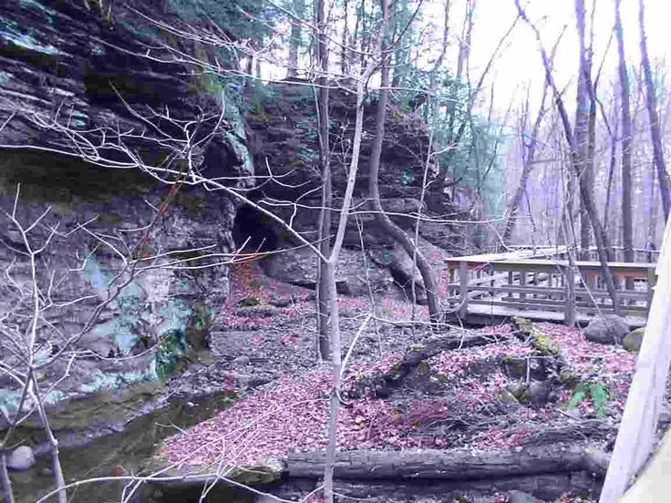 Trails in ohio the west woods in ohio is a 902 acre gem in western