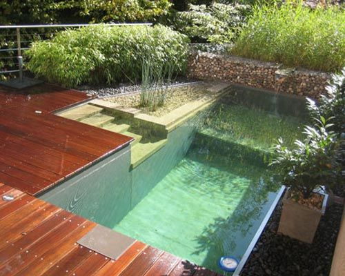 30 39 x 15 39 shallow 3 39 7 deep 6 39 2 images frompo - Above ground composite pool deck ...