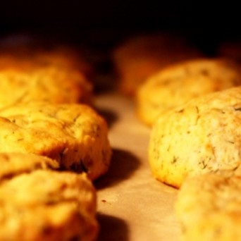 Greek Yogurt Dill Biscuits | Food I Want to Eat: Snacks & Appetizers ...