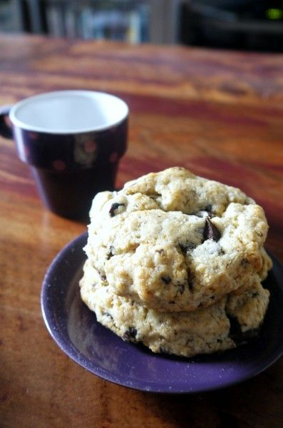 ... Basics: Scones for Daring Bakers chocolate, orange, cranberrry scones