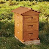 Backyard beehive and starter kit - might have to hire someone though to tend to it :)