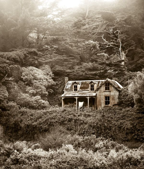 House in the woods abandoned pinterest - The house in the woods ...