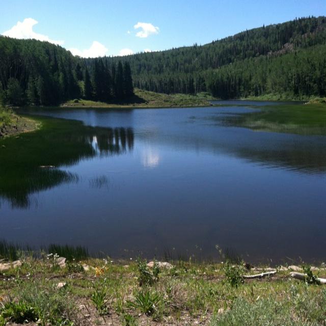 Utah fish lake national forest places and pictures for Fish lake utah