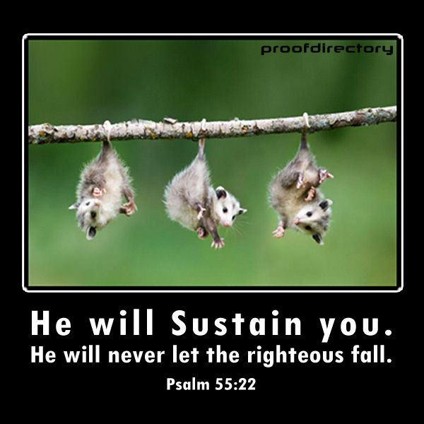 """He will sustain you. He will never let the righteous fall."" - Psalm 55:22"