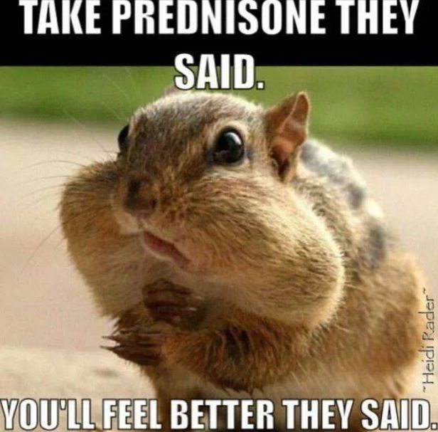i am taking prednisone