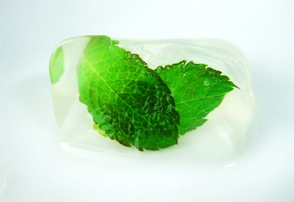 mint ice cube | Great Food | Pinterest