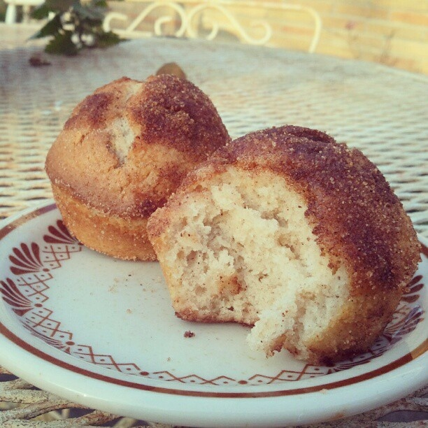 Cinnamon Sugar Coffee Cake Muffins | Dessert Time! | Pinterest