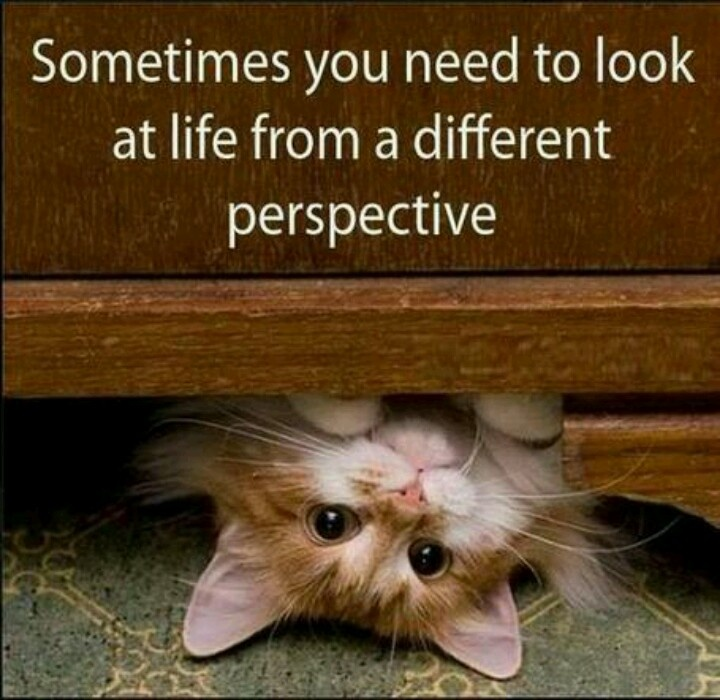 A different perspective Quotes Pinterest