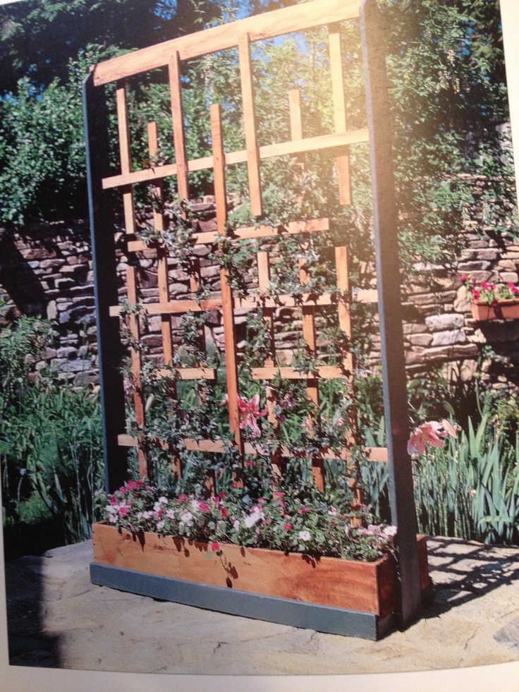 planter with trellis home pinterest. Black Bedroom Furniture Sets. Home Design Ideas
