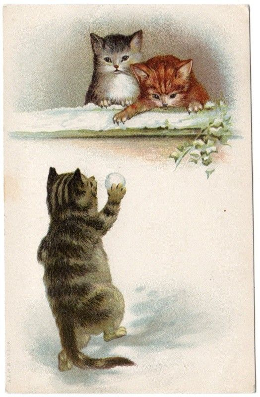 Early Helena Maguire ? CATS KITTENS Playing in Snow A Postcard