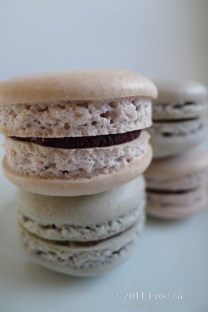 ... currant and raspberry filled macarons with dark chocolate ganache