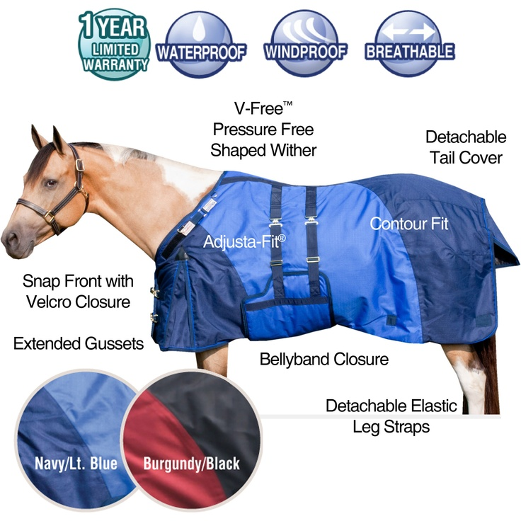 Schneiders' own StormShield® Euro Extreme voted BEST BUY by theSchneiders' own StormShield® Euro Extreme voted BEST BUY by theHorseJournal!Are you looking for the best bang for your buck this winter? In a September …