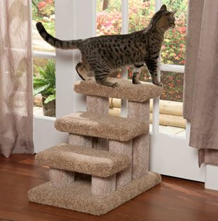 Step Carpeted Stairs