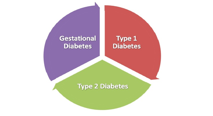 literature review on diabetes mellitus type 2