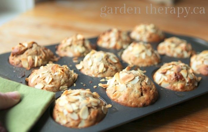 ... in the Garden Muffins (Zucchini Apple Cranberry Walnut Almond Oatmeal