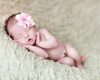 Newborn Photo Gallery - Lane Portraits