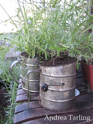 Old flour sifters for herb containers.  Perfect!