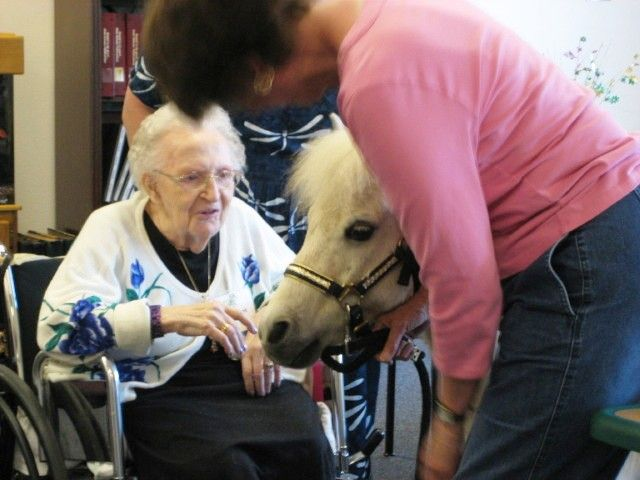 Image result for seniors with animals
