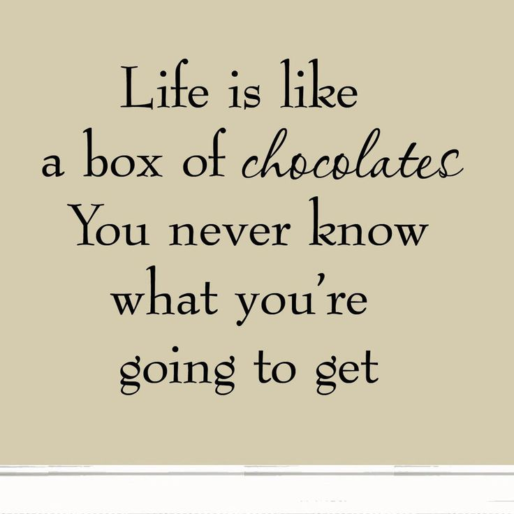 Life is Like a Box of Chocolates Wall Decal Quotes Sayings