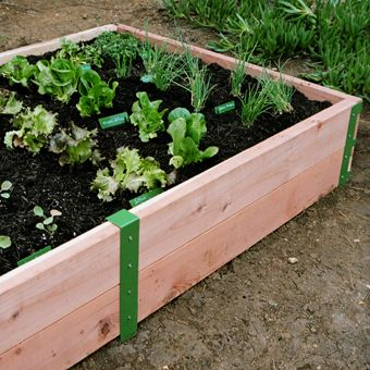 Easy flower bed. I saw it for $40 at Home Depot but it is probably cheaper to buy the wood and build. We could also stain it.