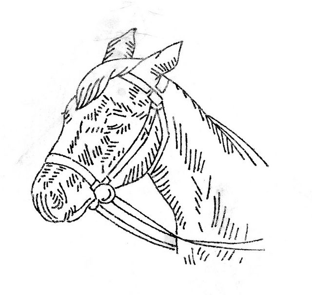 Embroidery horse pattern pinterest