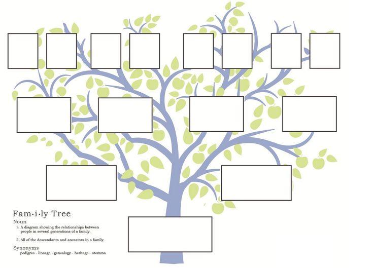 Программу Построения Генеалогических Деревьев