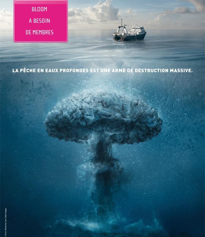 http://pescaires.com/chalutage-en-eaux-profondes-le-fleau/