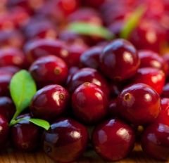 Cranberry Apple Sauce - When I first came to live in the US, I was ...