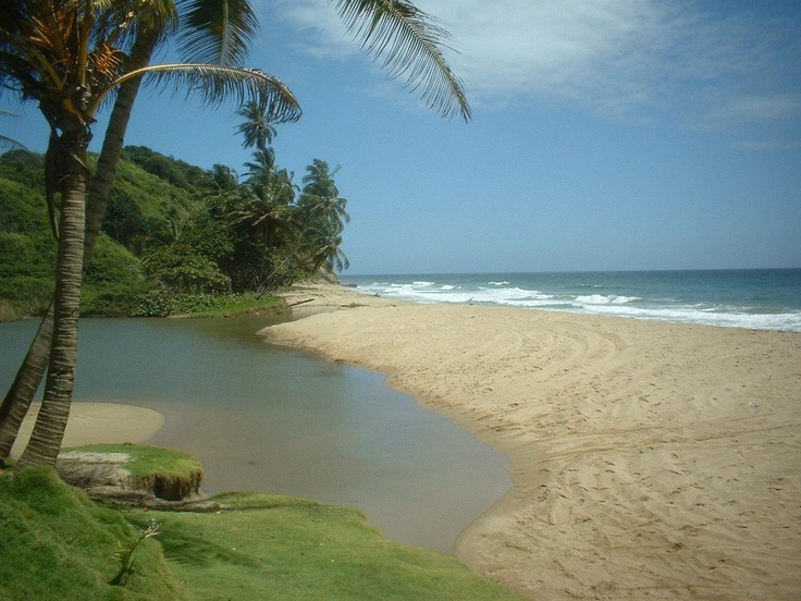 Playa Paraíso (Estado Vargas), Venezuela