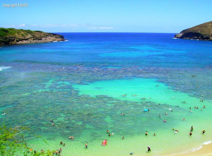 Hanauma bay snorkeling places i have been pinterest for Fishing spots oahu