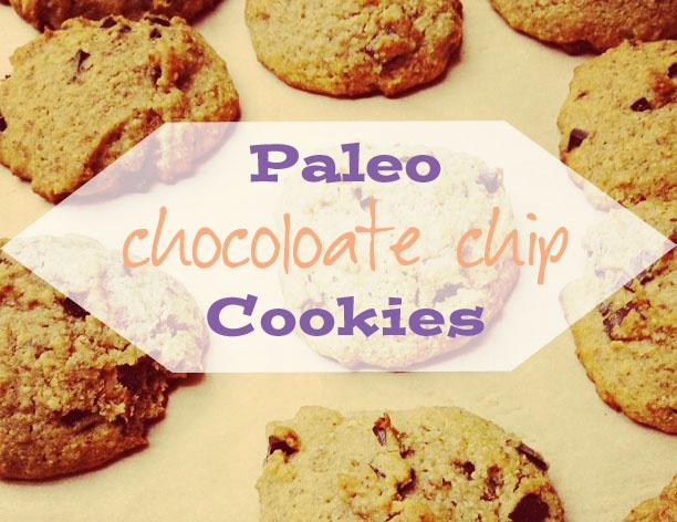 paleo chocolate chip cookies | Cookies | Pinterest
