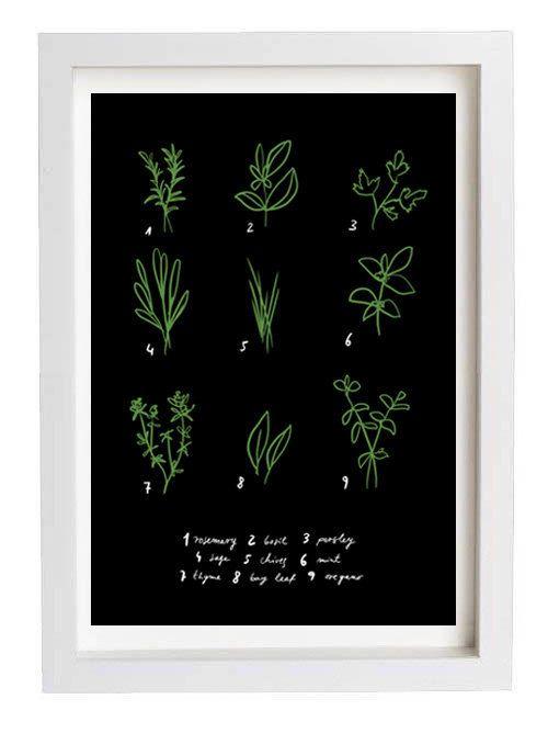 Botanical chart herbs poster print home pinterest for Kitchen artwork