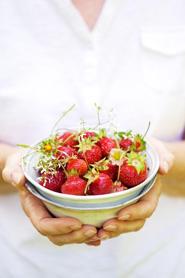mysplendidsummer The strawberry field | La Tartine Gourmande