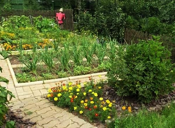 Hill Backyard : moreover Back Yard Landscaping Ideas On A Hill likewise Back Yard Hill