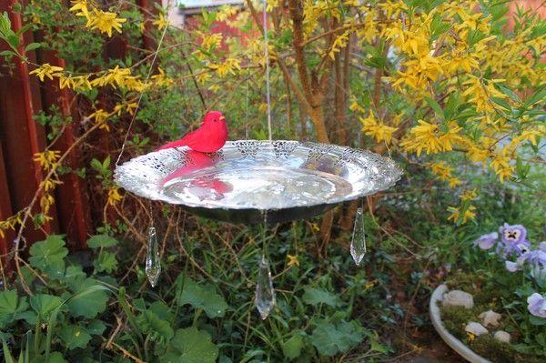 Lovely Hanging Bird Bath Green Garden Pinterest