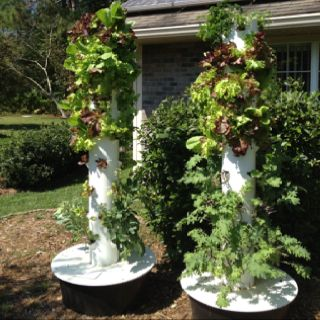Check Out The Tower Garden The Aeroponic Vertical