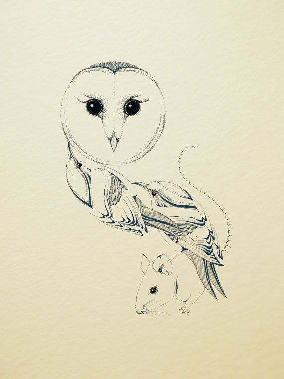 Line Art Etsy : Owl line drawing in royal blue via etsy tattoos