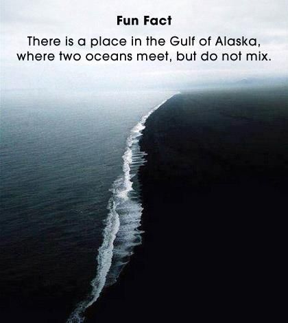 place in alaska where two oceans meet but dont mix ammonia