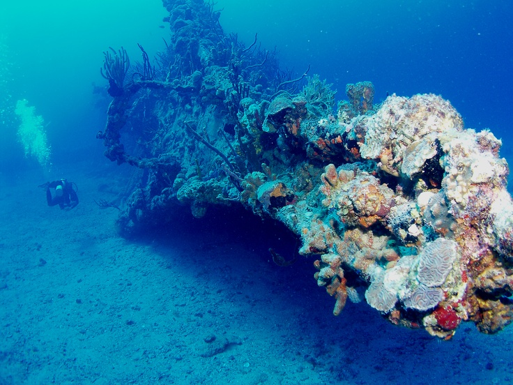 Diving US Virgin Islands