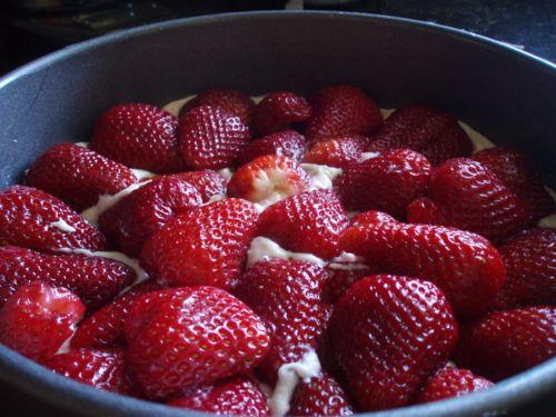Strawberry Summer Cake | FFT: Desserts and Stuff | Pinterest