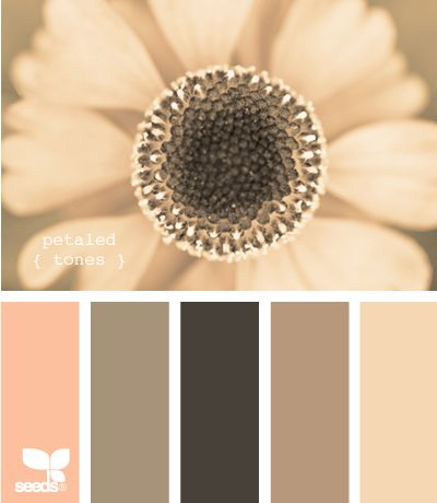 all kinds of color palette ideas for our new place! love these colors for the living room or bedroom- petaled tones